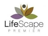 Lifescape2.jpg